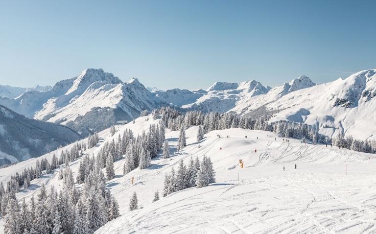 Landschaft im Winter in Saalbach