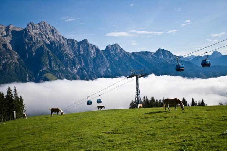 Asitzbahn Saalbach über Wiese mit Haflingern
