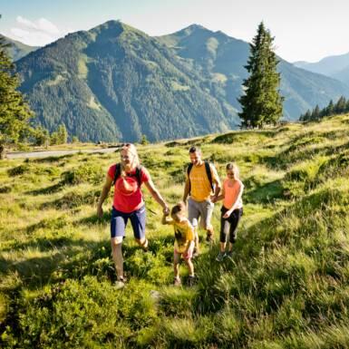 Familie wandert gemeinsam über grüne Bergwiese im Sommer