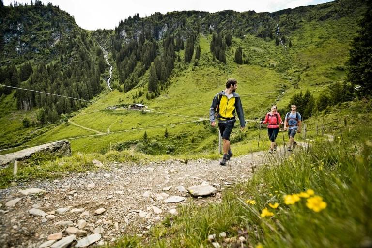 3 Leute beim Wandern auf Steinweg in grüner Landschaft