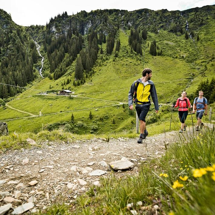 3 Leute Wandern auf Weg im Sommer