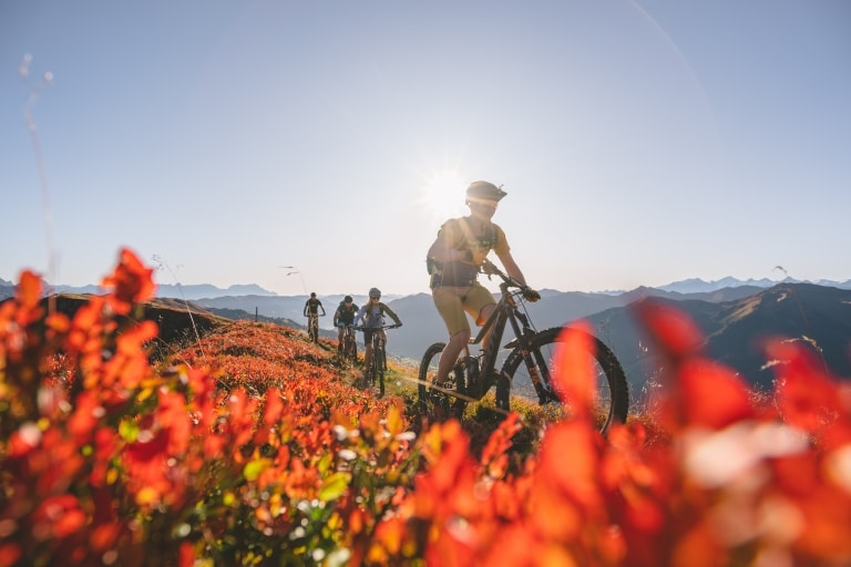 Bike-Guiding über Wiese mit roten Blumen