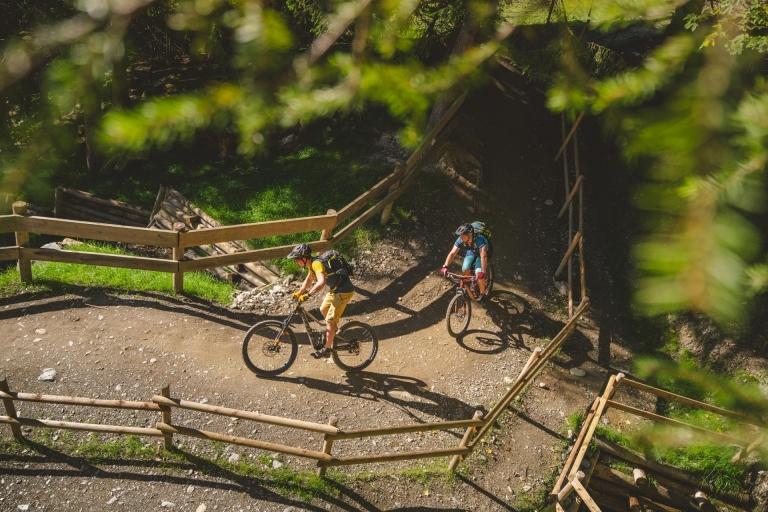 2 Männer auf Mountainbikes fahren durch Wald