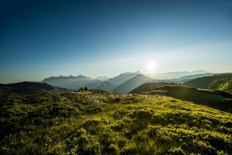 Im Vordergrund eine saftig-grüne Almwiese und im Hintergrund die Salzburger Bergwelt