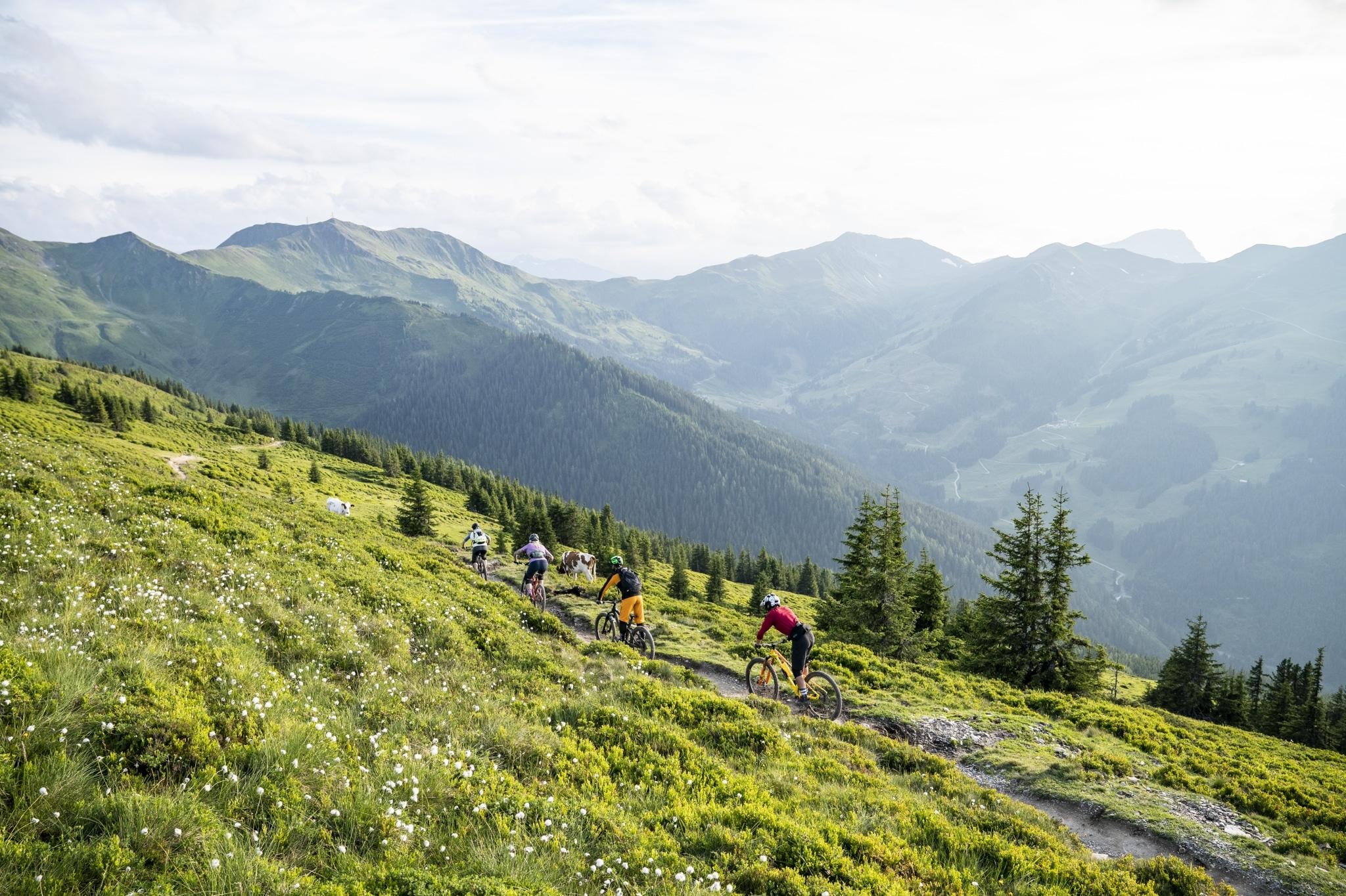 Vier Mountainbiker fahren über einen Trail mitten durch die saftig grünen Almwiesen