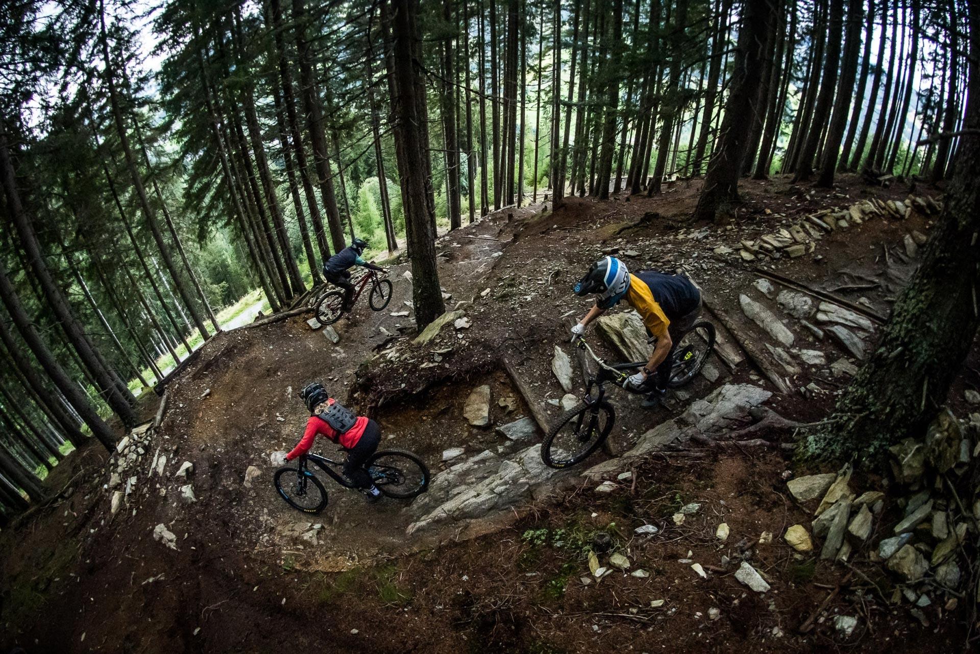 Drei Mountainbiker fahren einen Trail im Wald bergab